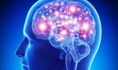 Expanding Brain Generator
